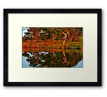 """Morning Reflections"" Framed Print"