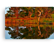 """Morning Reflections"" Canvas Print"