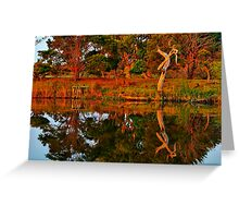 """Morning Reflections"" Greeting Card"