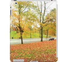 Glowing in Autumn  iPad Case/Skin