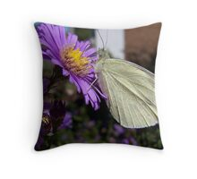 White Butterfly on Purple Throw Pillow