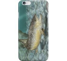 River Brown iPhone Case/Skin