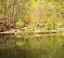reflection pool by budrfli