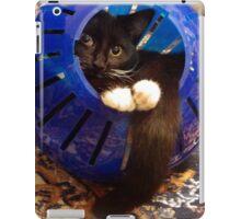 Kitty Ball iPad Case/Skin