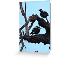 Magpies Greeting Card
