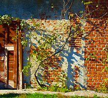 Abandon by Alessia Ghisi Migliari