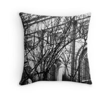 Arches and Branches, Charleston, SC Throw Pillow