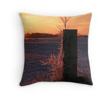 Ice Crystals at Sunrise Throw Pillow