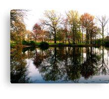 #307       Raw Reflection Canvas Print