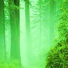Mist by Snowmixer
