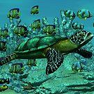 Sea Turtle by Walter Colvin