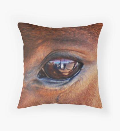 Lens Capture Throw Pillow