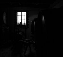 Cellar by Jenni Smith