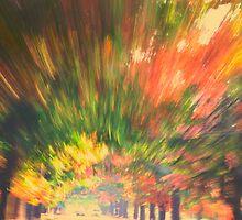 Autumn in Bright by Col  Finnie