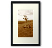 Barbed-wire Framed Print