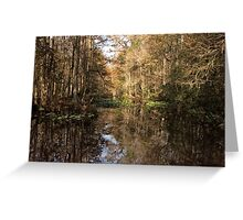 Beauty in the Swamp Greeting Card