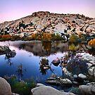 Joshua Tree National Park Series - Barker Dam Pond at Dusk by Philip James Filia