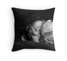 Talk to the PAW! Throw Pillow