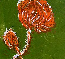 Blossoming Poppy (II) by Gudrun Eckleben