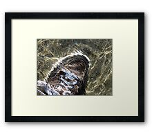 Shoe Framed Print