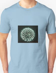 FIREWORKS  (Two) T-Shirt