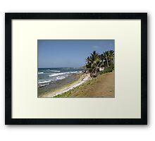 tropical landscape Framed Print
