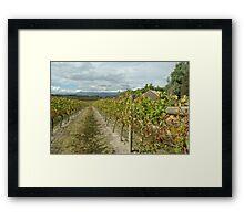 Yarra Valley Framed Print