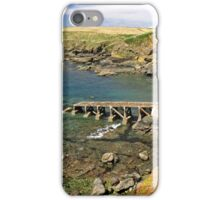The Old Lizard Lifeboat Station iPhone Case/Skin