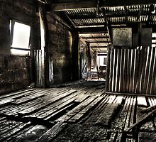 The Shed by Steve Chapple