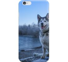 Willit in the Woods iPhone Case/Skin