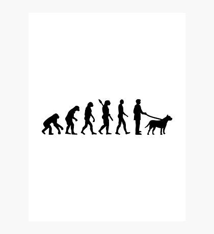 Evolution Pit bull Photographic Print