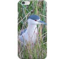 Bird Formally known as Marcus iPhone Case/Skin