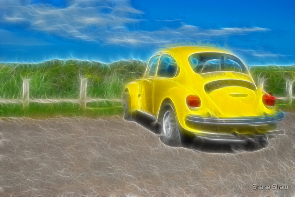 Bright Beetle by Shane Shaw