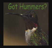 Got Hummers? by Dennis Jones - CameraView