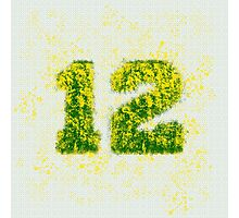 Abstract Twelve Paint Splatter - Yellow On Green Photographic Print