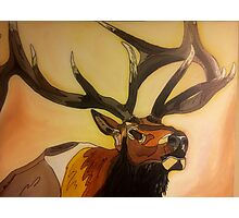 """Casanova"" - Elk Painting Photographic Print"