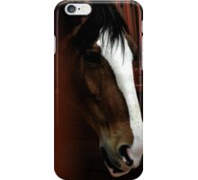 King of Equines iPhone Case/Skin