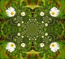 Field of Daisies by karenlynda
