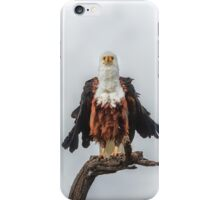 Not So Majestic Eagle iPhone Case/Skin