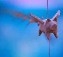 When pigs fly by marycloch