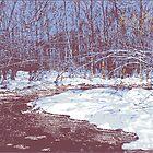 Icy Creek by Len Grossman