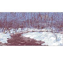 Icy Creek Photographic Print