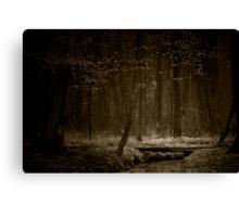 afraid of the light I Canvas Print