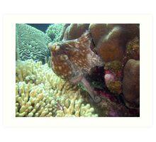 caribbean octopus Art Print