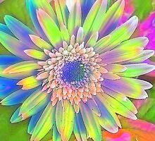 Tie Dye Daisy by Linda Fields