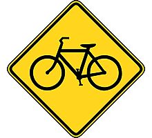 Bicycle Crossing Photographic Print