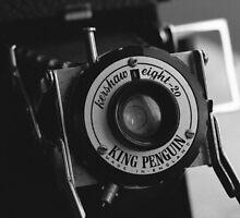 King Penguin Folding Camera by Steve Churchill