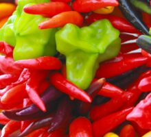 Colorful Hot Pepper Bunches Sticker