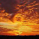 New York City Sunset by Alberto  DeJesus