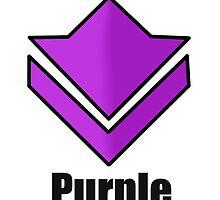 Commander's Compendium - Purple by Melissa Yukura
